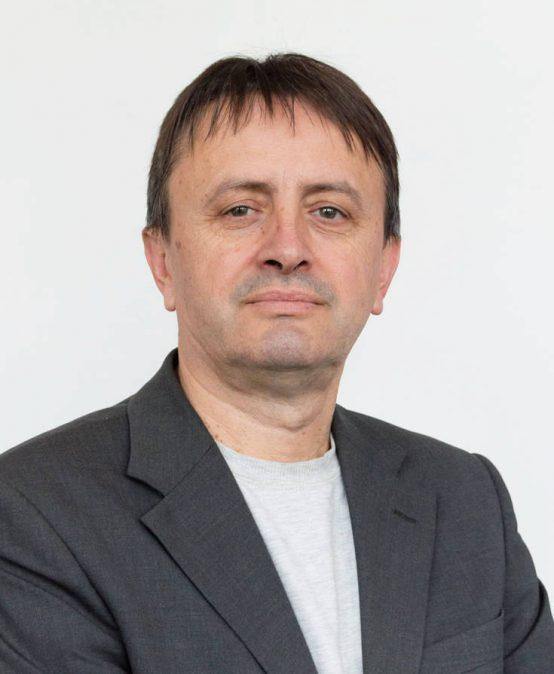 Проф. др Љубомир Јовановић